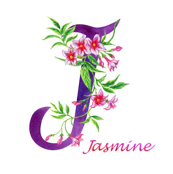 Yasmin Gayer