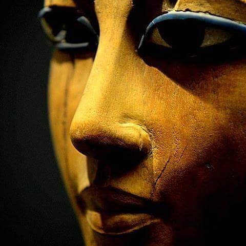 أماني المصري