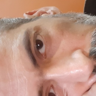 محمود التركي