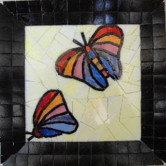الفراشات