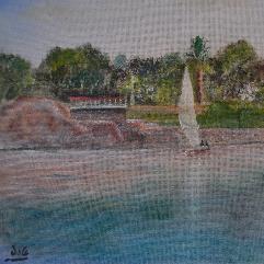 جزيرة النباتات باسوان