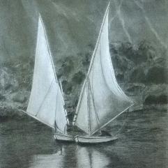 فراشة النيل