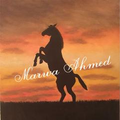 Horse At Night