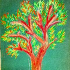 شجرة حمراء
