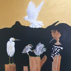 طيور محيطه