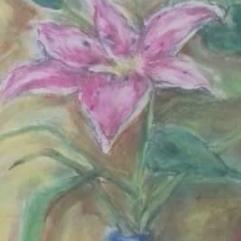 زهور الليلي