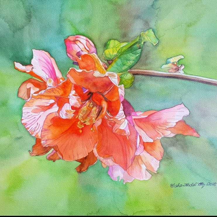 Alluring Flower