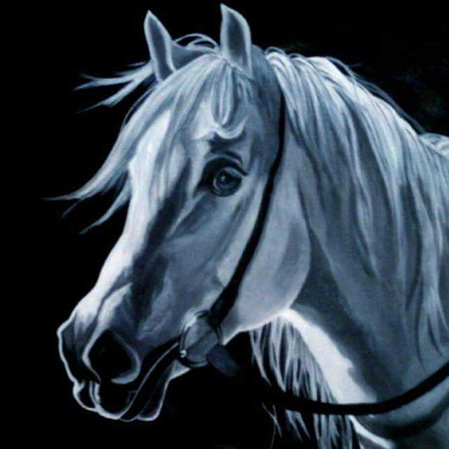 حصاني