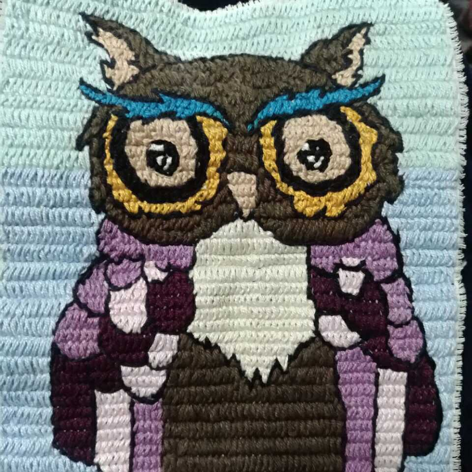 The Owl (Etamine Thread Art)