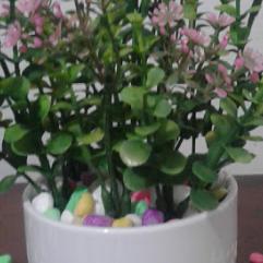 نباتات وزهور صناعية رقيقة