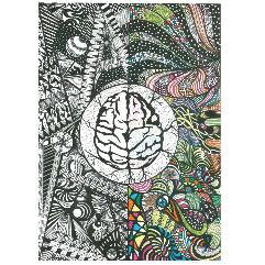 (المخ البشري  (فن دودل