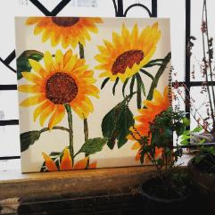 زهور دوار الشمس