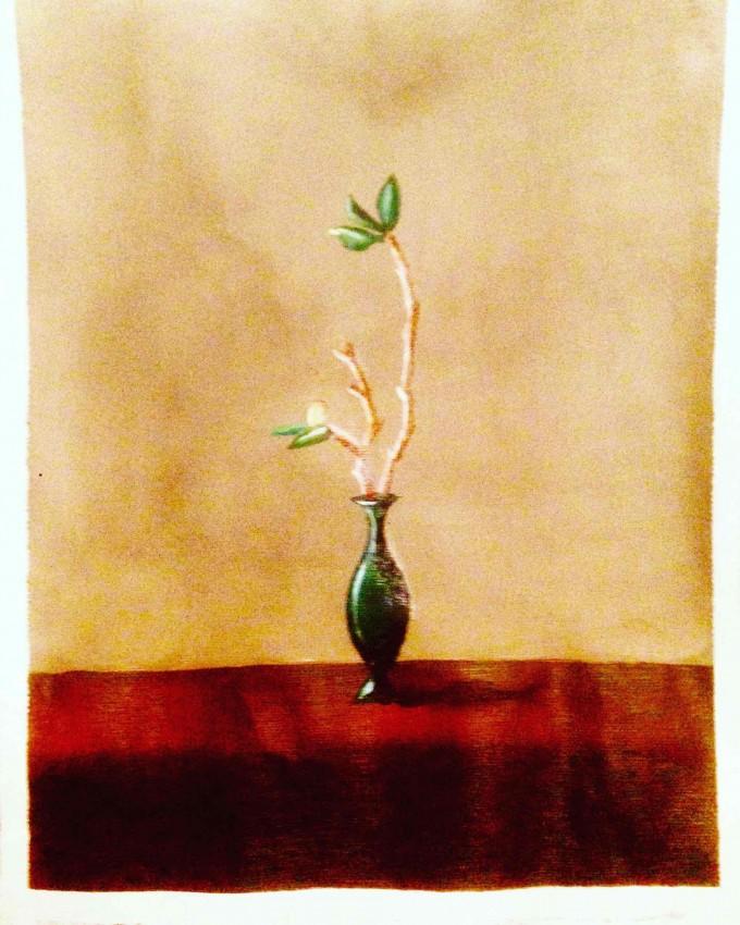 زهور ٢