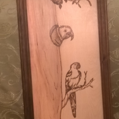 The Parrot (Burning On Wood)