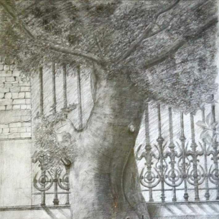 شجرة الاتيلييه