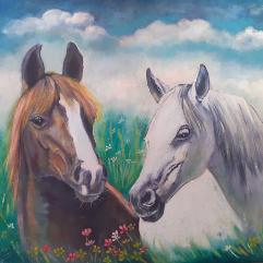 خيول عربية 1