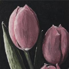 زهور التيوليب