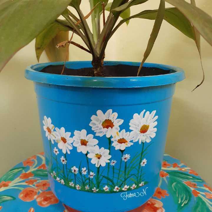 Decorated Plants Pot