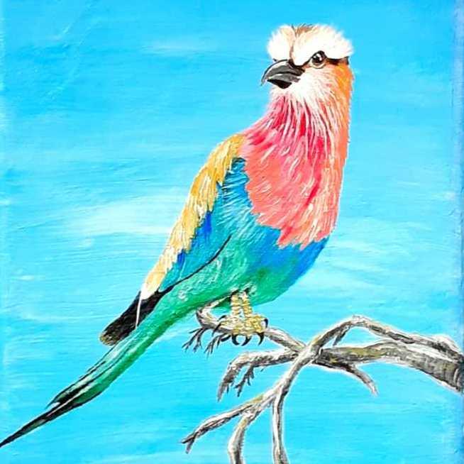 طائر  الشقراق