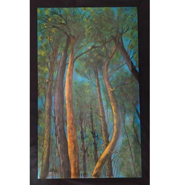 شجر الغابة