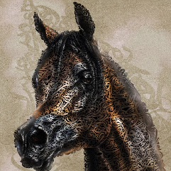 Portrait of the Egyptian Horse Marawan Al Shaqab