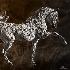 A Purebred Arabian Horse