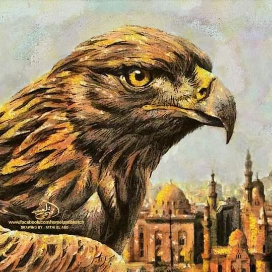 Guarding Eagle