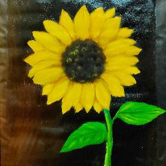 زهرة عباد الشمس