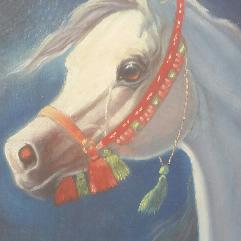 بورتريه حصان ابيض